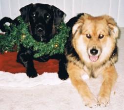 christmas 2001 (2)